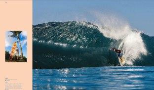 Diego Santos - Hawaii
